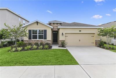 Deland  Single Family Home For Sale: 644 E Victoria Trails Blvd