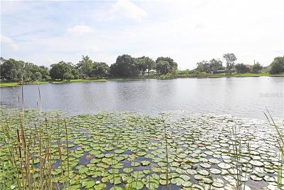 Casselberry Single Family Home For Sale: 223 Lake Ellen Drive