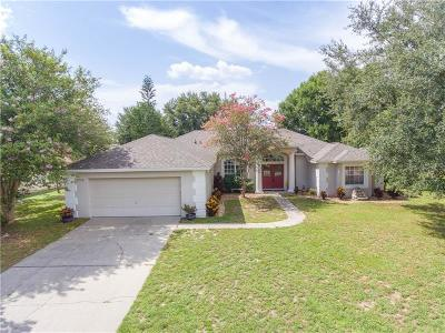 Clermont Single Family Home For Sale: 13743 Calle De Ora Court