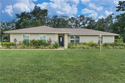 Oviedo Single Family Home For Sale: 285 Carrigan Avenue