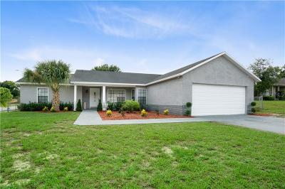 Orlando Single Family Home For Sale: 4619 Wassee Court
