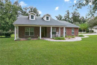Deland  Single Family Home For Sale: 1310 Jasper Lane