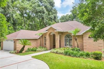 Deland  Single Family Home For Sale: 750 Shane Drive