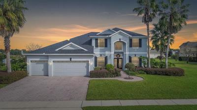 Sanford Single Family Home For Sale: 5033 Hawks Hammock Way
