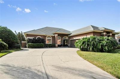 Orlando Single Family Home For Sale: 2460 Lielasus Drive