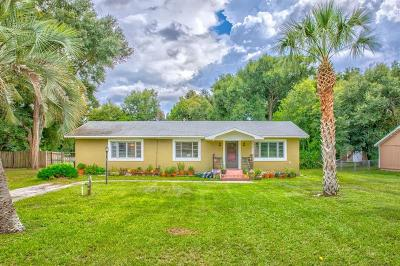 Debary Single Family Home For Sale: 43 Lake Drive