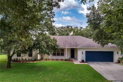 Orlando Single Family Home For Sale: 19106 Sheldon Street