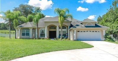 Winter Garden Single Family Home For Sale: 17400 Davenport Road
