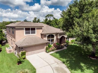 Altamonte Springs Single Family Home For Sale: 1158 Brantley Estates Drive