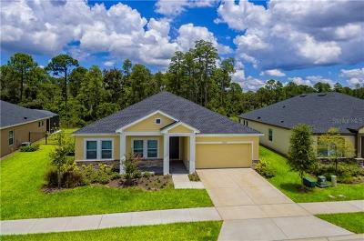 Clermont Single Family Home For Sale: 17633 Serenoa Boulevard