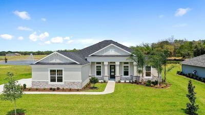 Ormond Beach Single Family Home For Sale: 3007 Silvermines Avenue