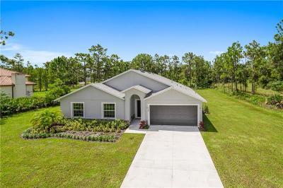 Celebration, Davenport, Kissimmee, Orlando, Windermere, Winter Garden Single Family Home For Sale: 19300 Majestic Street