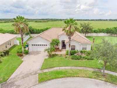 Kissimmee Single Family Home For Sale: 2511 Summerland Way