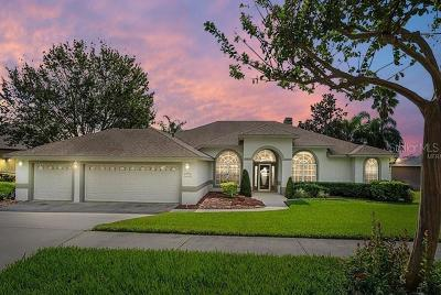 Clermont Single Family Home For Sale: 14933 Green Valley Boulevard