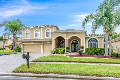 Orlando Single Family Home For Sale: 2449 Fawnlake Trail