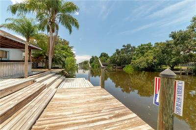 Tampa Single Family Home For Sale: 8717 Driftwood Drive