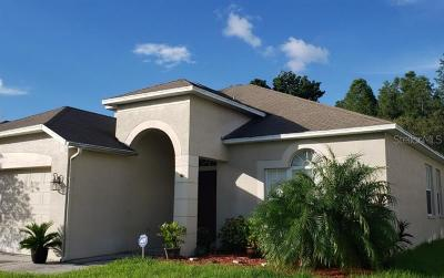 Wesley Chapel Single Family Home For Sale: 5101 Windingbrook Trail
