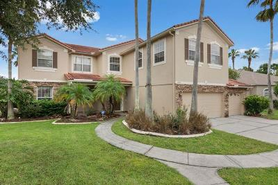 Orlando Single Family Home For Sale: 2427 Teton Stone Run