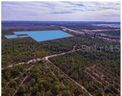 Orlando Residential Lots & Land For Sale: International Drive