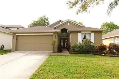 Winter Springs Single Family Home For Sale: 341 Streamview Way