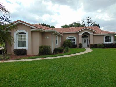 Clermont Single Family Home For Sale: 11909 Cypress Landing Avenue
