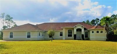 Orlando Single Family Home For Sale: 5004 Baker Avenue #3A