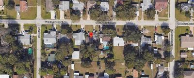 Tampa Single Family Home For Sale: 4512 W Ballast Point Boulevard