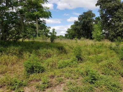 Apopka Residential Lots & Land For Sale: 1303 Johns Road