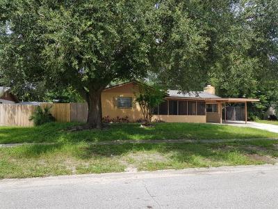 Orlando Single Family Home For Sale: 3610 Connor Avenue