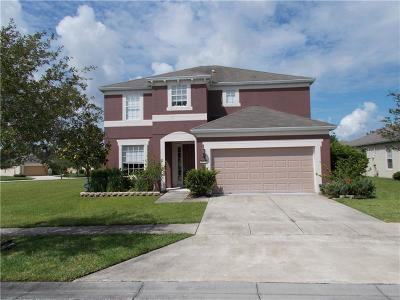 Palm Bay Single Family Home For Sale: 1657 Dittmer Circle SE