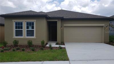 Celebration, Davenport, Kissimmee, Orlando, Windermere, Winter Garden Single Family Home For Sale: 876 Orchid Grove Boulevard