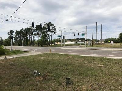 Commercial For Sale: 29828 State Road 19