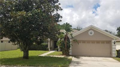 Clermont, Kissimmee, Orlando, Windermere, Winter Garden, Davenport Single Family Home For Sale: 1209 N Jacks Lake Road