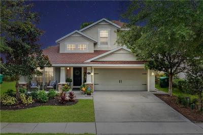 Deland  Single Family Home For Sale: 717 Ravenshill Way