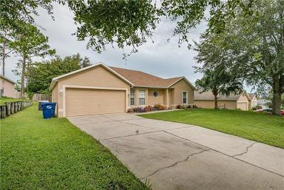 Clermont Single Family Home For Sale: 15833 Switch Cane Street