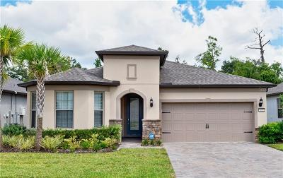 Lake Mary Single Family Home For Sale: 1192 Patterson Terrace