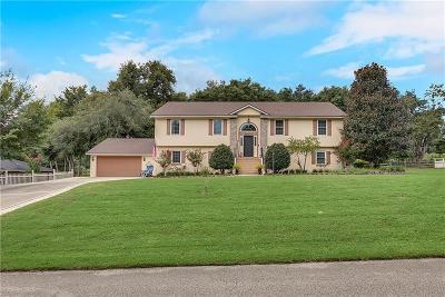 Montverde Single Family Home For Sale: 16017 Harbar Oaks Drive