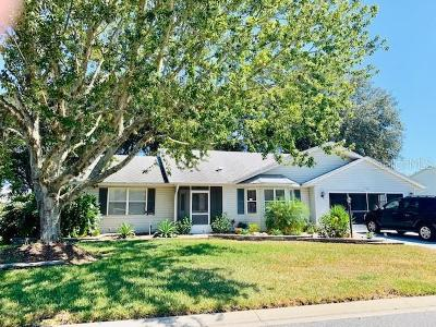 Leesburg Single Family Home For Sale: 26126 Newcombe Circle