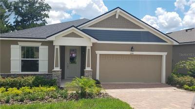 Deland  Single Family Home For Sale: 2355 Regency Park Drive