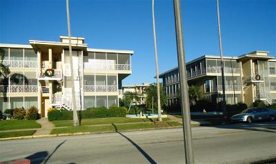 St Petersburg Condo For Sale: 1048 N Shore Drive NE #3