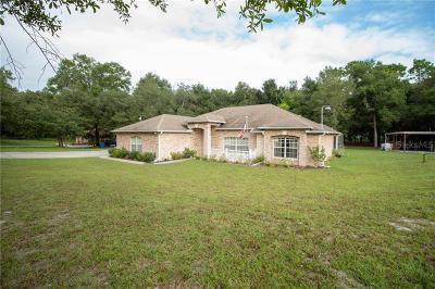Deland  Single Family Home For Sale: 1115 Roanoke Avenue
