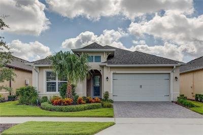 Davenport, Clermont, Kissimmee, Haines City, Poinciana Single Family Home For Sale: 2241 Antilles Club Drive