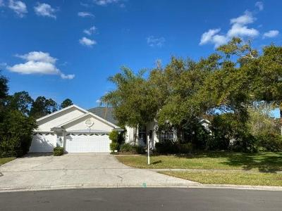 Hillsborough County Single Family Home For Sale: 17406 Hialeah Drive