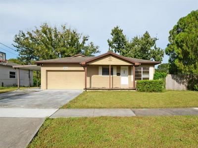 Orlando Single Family Home For Sale: 5612 Satel Drive