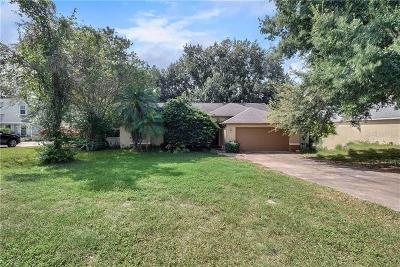 Leesburg Single Family Home For Sale: 10628 Summit Square Drive