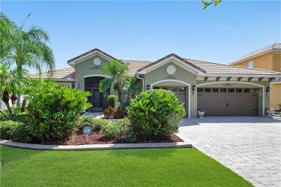 Kissimmee Single Family Home For Sale: 3515 Valleyview Drive