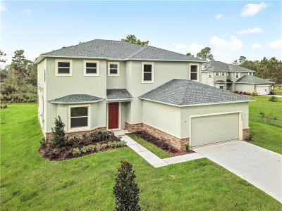 Clermont, Champions Gate, Championsgate, Davenport, Winter Garden, Windermere, Orlando, Kissimmee Single Family Home For Sale: 20426 Sabal Street #4A