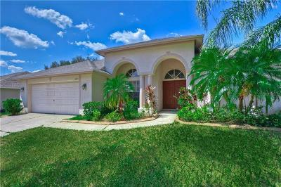 Hillsborough County, Pasco County, Pinellas County Single Family Home For Sale: 4405 Winding River Drive