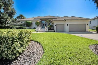 Brevard County Single Family Home For Sale: 3835 Raney Road
