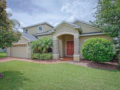 Clermont Single Family Home For Sale: 12114 Still Meadow Drive
